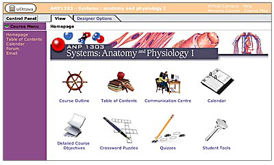 Screenshot of the course home page.